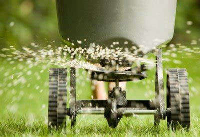 dangers  lawn chemicals planet natural