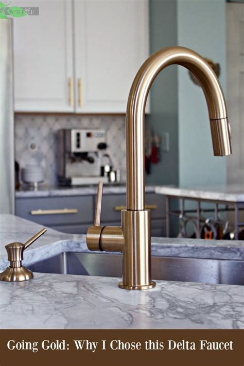 gold kitchen faucet delta gold trinsic kitchen faucet chic and