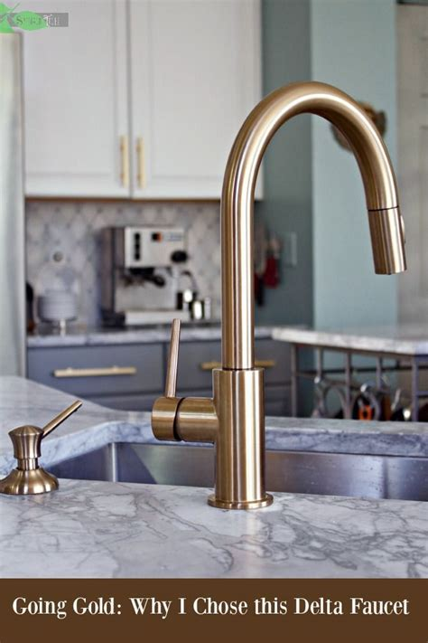 Delta Gold Trinsic Kitchen Faucet, Chic and Super