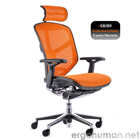 genidia office chairs all about the genidia office chair
