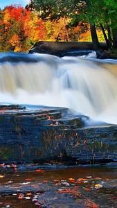 Wallpaper, Forest, 5k, 4k, Wallpaper, River, Waterfall
