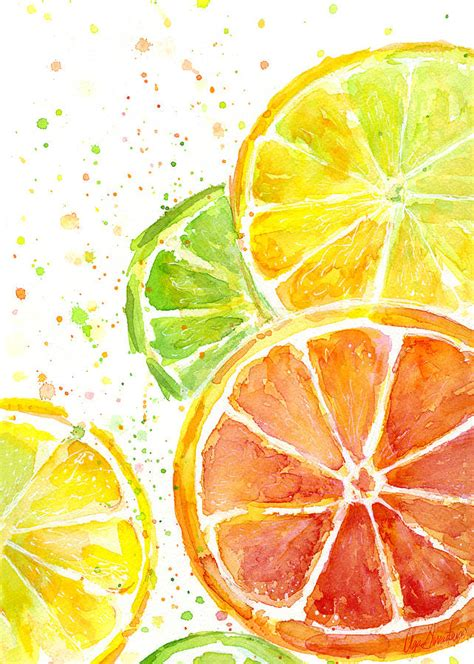 Kitchen Wall Painting Ideas - citrus fruit watercolor painting by olga shvartsur