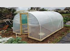 [shed garden] 20 images gardensonline canna x
