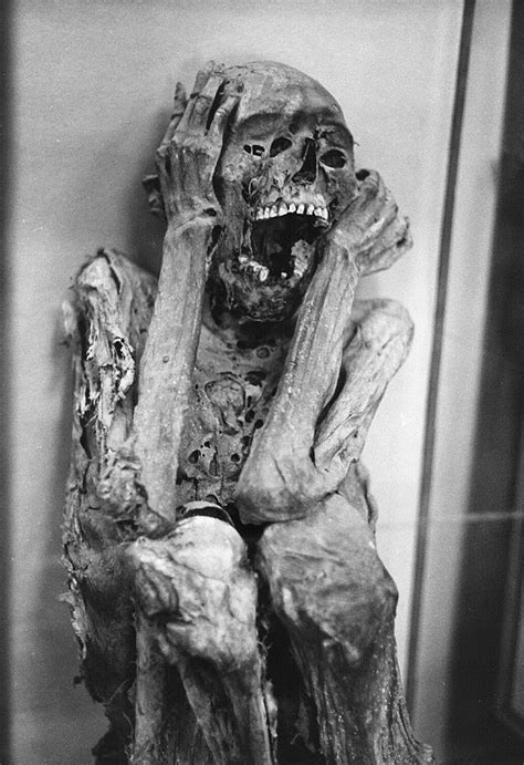 An Inca mummy from the Temple of the Sun   Dark Macabre in 2019   Egypt mummy, Egyptian mummies