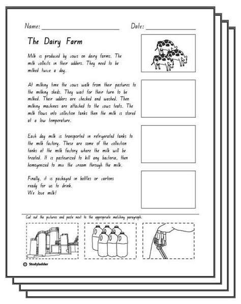 the dairy farm reading response activity sheets