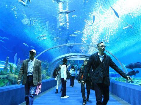 voici l aquarium le plus grand du monde 27 ao 251 t 2014