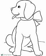 Coloring Dog Pages Dogs Cartoon Colouring Printable Doge Template Getcolorings sketch template