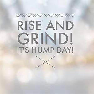 The 25+ best Hump day quotes ideas on Pinterest   Happy ...