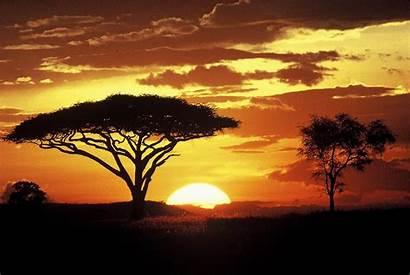 Serengeti Safari African Adventure Specials Days Plains