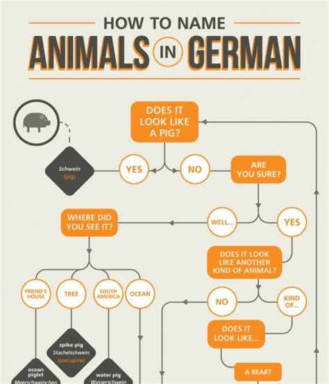 Around the Wherever: Hilarious chart of German names for