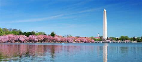 national cherry blossom festival march   april
