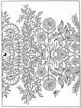 Coloring Garden Secret Pages Adult Printable Getdrawings Gardens Fnaf Mermaid Flowers Peacock Anti Getcolorings sketch template