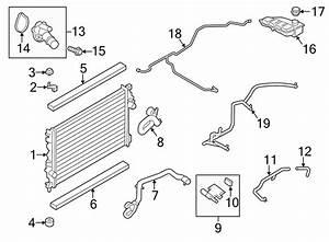Ford Escape Engine Coolant Reservoir Hose  2 5 Liter