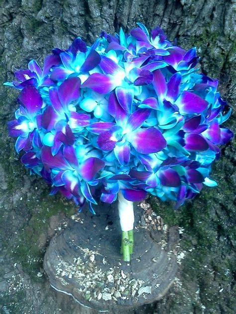 Royal Blue Orchid Wedding Bouquet Einmv Blue Wedding