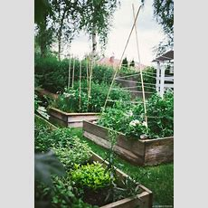 778 Best Images About Garden Potager Parterres & Formal On