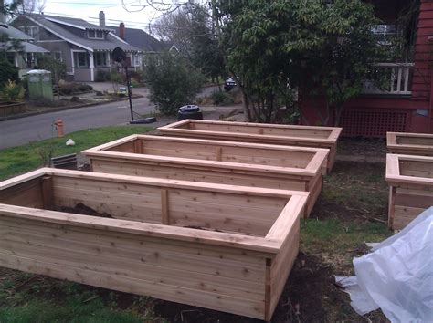 best raised bed garden best raised garden bed ideas and tips what is the best wood to use for raised garden beds best