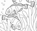 Habitat Coloring Animal Pages Habitats Printable Getcolorings sketch template