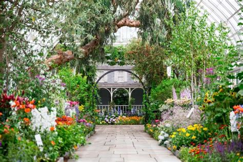 botanical garden nyc summer is great outdoors in nyc parks and zoos ny daily news