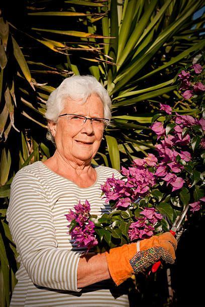 senior women summer  bush stock  pictures