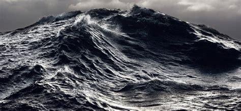 high seas conservation marine conservation institute