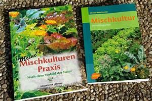 Mischkultur Im Garten : mischkultur im selbstversorgungs garten ~ Orissabook.com Haus und Dekorationen
