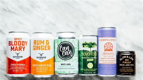 6 Canned Cocktails To Sneak In Your Various Tote Bags All