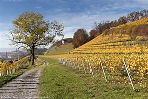 Die Farben Des Herbstes : die farben des herbstes stefan gubser stefan gubser ~ Lizthompson.info Haus und Dekorationen