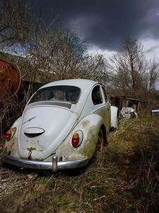 Voiture A Restaurer Gratuite : images gratuites roue vieux v hicule auto voiture ancienne vw beetle vieil homme ~ Medecine-chirurgie-esthetiques.com Avis de Voitures