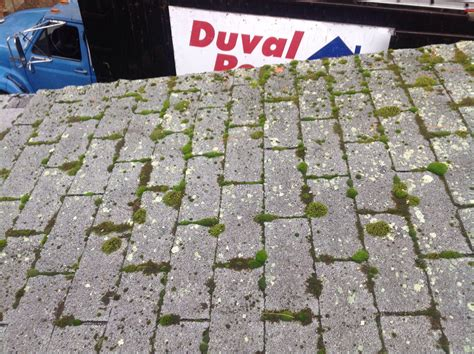 Moss Eats Away Roof Shingles In Tewksbury, Ma 2003 Hilux Dual Cab Roof Racks The Roofing Center Utah Metal Materials Oklahoma City Trailer Snow Removal Equipment 2 Clay Tiles Installation Details Spanish Tile Rubber Slate Uk Patio Designs Nz