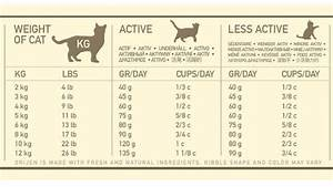 Cat Food Feeding Chart 13 Facts On How Much And Dry Food To Feed A Cat
