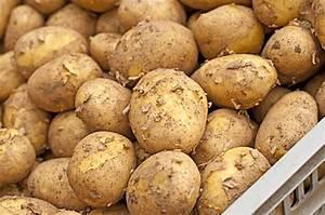 Kartoffeln Und Zwiebeln Lagern : kartoffeln richtig lagern kraut r ben ~ Markanthonyermac.com Haus und Dekorationen