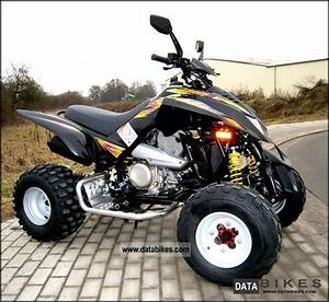 2012 Dinli Dinli 450 Atv 450cc Sports Dl904