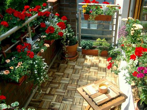 balcony gardening tips  follow  setting