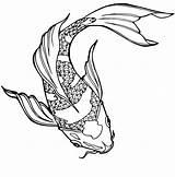 Coloring Pond Fish Koi Adults Japanese Pdf Rachel sketch template