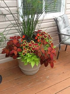 ideas   planters   neighborhood gardenpatio pinterest garden container