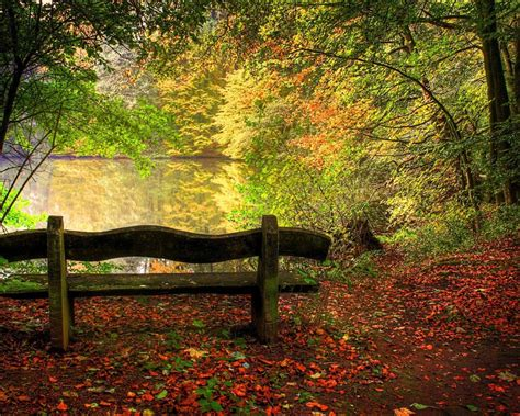 Nature Fall Wallpapers  Wallpaper Cave