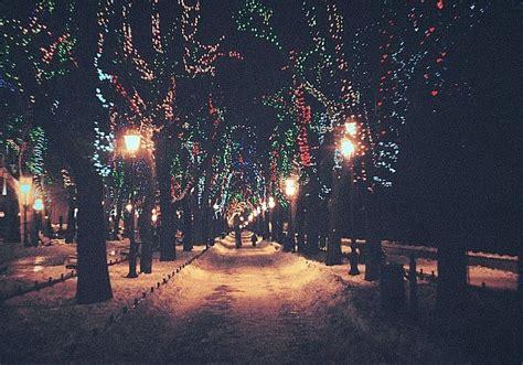 christmas light night winter wood image 282442 on favim com