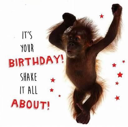 Happy Birthday Orangutan Card Move