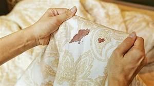 Katzenhaare Entfernen Kleidung : kleidung entfernen cool aus kleidung entfernen die auf weisser wasche entfernen aus kleidung ~ Orissabook.com Haus und Dekorationen