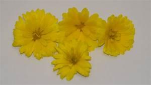 Getrocknete Blüten Kaufen : ringelblumen gelb essbare bl ten kaufen ~ Orissabook.com Haus und Dekorationen