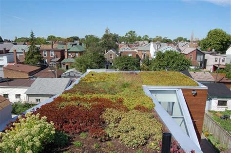 Rooftop Garden Design Ideas Adding Freshness To Your