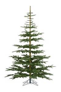 What Types Of Trees Are Christmas Trees buy 7ft noble pine christmas tree from the next uk online