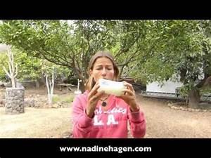 Aloe Vera Gel Herstellen : aloe vera gel creme selber herstellen chemiefreie hautpflege youtube ~ Frokenaadalensverden.com Haus und Dekorationen