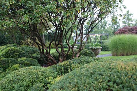 Richtig Große Pflanzen › Zinsser Gartengestaltung