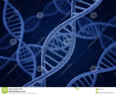 dna molecule stock image image
