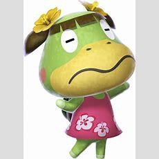 Leila  Animal Crossing Wiki  Fandom Powered By Wikia