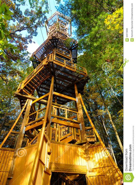 forest emergent tower editorial image image
