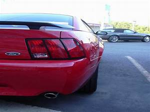 2003 Ford Mustang Mach 1 Gallery 5403 | Top Speed