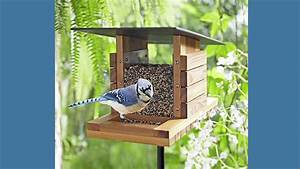 Bird Feeder Plans And Step-by-step Instructions