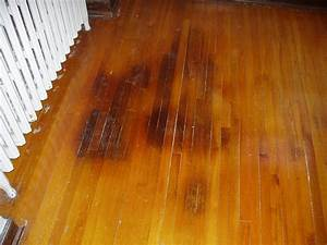 how to get rid of dog urine smell in house from carpet With how to clean dog urine from hardwood floors